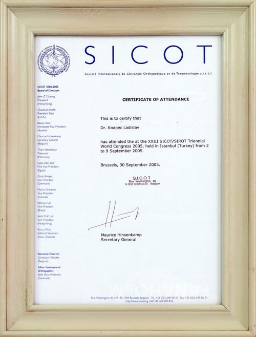 Certificitate of attendance Sicot